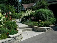 Wiarton natural bed garden wall, walkway and India Grey steps